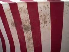 schimmel aus stoff entfernen schimmelflecke im strandkorb stoff haus garten forum
