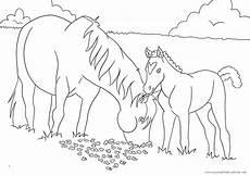 Ausmalbild Pferde Fohlen 99 Das Beste Ausmalbilder Pferde Zum Ausdrucken