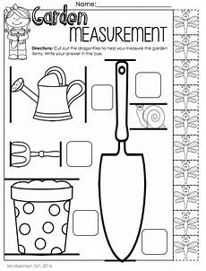 free non standard measurement worksheets for kindergarten 1865 may printables kindergarten literacy and math math kindergarten literacy math measurement