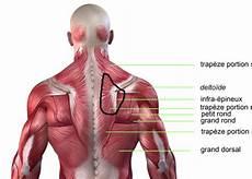 cote cassée douleur dans le dos douleur haut du dos vigilance envers l adversaire