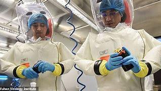 Image result for images hazmat suit in lab
