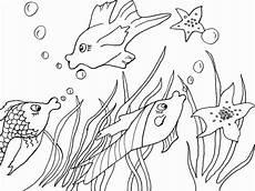Ausmalbilder Verschiedene Fische Ausmalbilder Fische Zum Ausdrucken