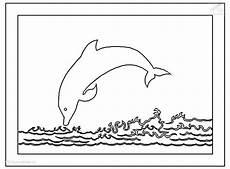 Delphin Malvorlagen Zum Ausdrucken Lernen Delphin Malvorlage Malvorlagen Ausmalbilder Und