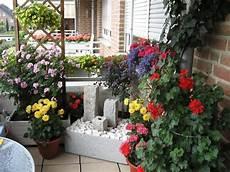 ganzjahresbepflanzung für balkonkästen gestaltungsideen f 252 r balkon und dachterrasse mein