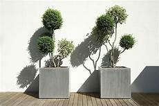 vasi da fiori per esterno vasi in resina per esterni vasi e fioriere vasi da