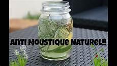 anti moustique efficace naturel diy anti moustique naturel