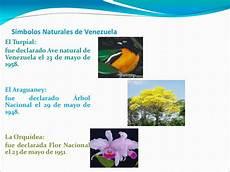 simbolos naturales de barina simbolos naturales de venezuela