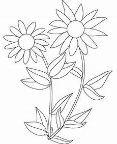 sunflower coloring pages to and print for free