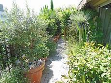 Balcon Plein Sud Plantes Et Am 233 Nagement C 244 T 233 Maison