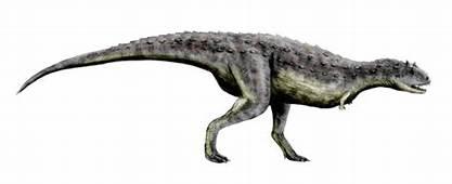Carnotaurus  Dinosaurier Wiki Wikia