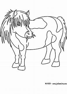 pony malvorlagen zum ausdrucken my pertaining to
