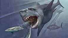 Ikan Hiu Terbesar Di Dunia Megalodon Di Klaim Masih Hidup