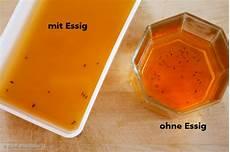 Fruchtfliegenfalle Hochwirksam Ohne Essig Rezept Mit