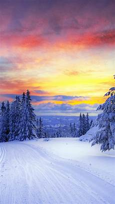 iphone wallpaper winter trees 640x1136 winter trees snowy road sunset iphone 5 wallpaper