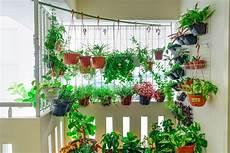 natürlicher sichtschutz balkon sichtschutz f 252 r den balkon sicher und gut gesch 252 tzt