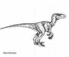 Ausmalbilder Dinosaurier Raptor Jurassic Park Ausmalbilder Einzigartig 24 Raptor