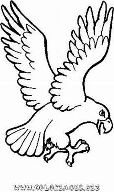 aigle dessin facile dessin un vautour