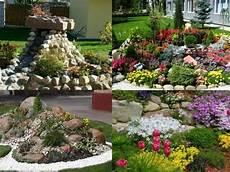 Steine Garten Bepflanzen Arten Bodendecker Stauden Stein