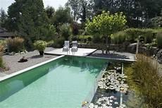 Schwimmteich Oder Pool - 9 mythen 252 ber den naturnahen bio schwimmteich im garten