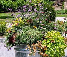 container gardening makes it easy to have a green thumb the gazette