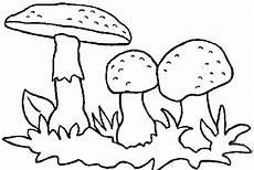 Window Color Malvorlagen Pilze Pilze Im Gras 2 Ausmalbild Malvorlage Pilze