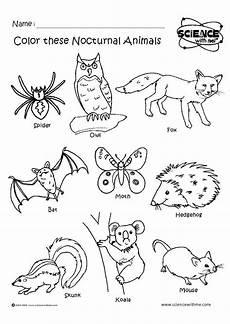 animal colouring worksheets 13824 angol feladatok mond 243 k 225 k sz 237 nezők nocturnal animals 201 jszakai 225 llatok nocturnal animals