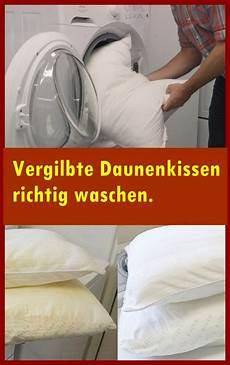 Vergilbte Daunenkissen Richtig Waschen Richtig Waschen