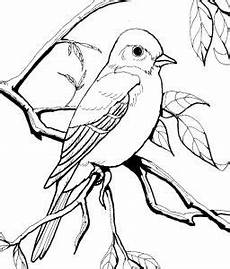 75 Gambar Burung Hitam Putih Untuk Mewarnai Terlengkap