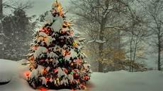 77 free christmas tree wallpaper wallpapersafari