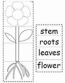 kinds of plants worksheets for kindergarten 13653 11 best family printables images on worksheets family trees and classroom ideas