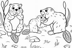 Tier Malvorlagen Kostenlos Animal Families Coloring Pages Free Printable