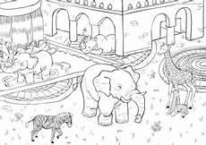 Bilder Zum Ausmalen Zoo Meine Wimmelwelt Spielerisch Lernen Mit Spa 223