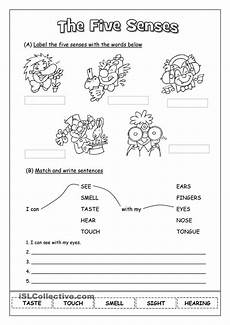 five sense worksheets elementary 12632 25 best images about the five senses on language vocabulary worksheets and taste food