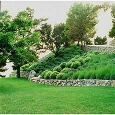 steilen hang bepflanzen slopes on landscaping design hillside