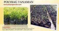 jual polybag untuk tanaman harga murah harga pabrik jual plastik untuk pertanian perkebunan