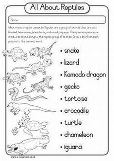 printable worksheets reptiles word search party planning reptiles reptiles preschool