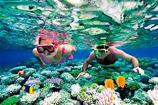 riviera snorkeling the cancun snorkeling adventure tour
