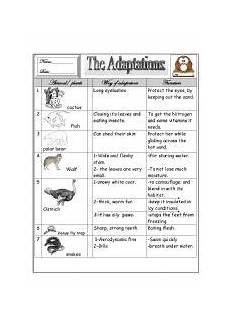 animal adaptations worksheets 2nd grade 13792 worksheet some animal 180 s adaptations worksheets science and