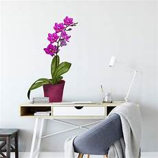 wandtattoo orchidee wandtattoo orchidee im topf wall art de