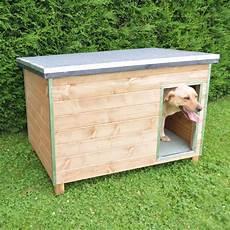 vive l elevage niche en bois pour chien chien