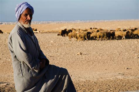 The Bedouins