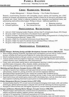 resume professional accomplishments facebookthesis web