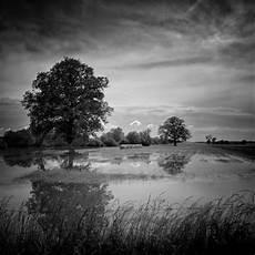 noir et blanc image noir et blanc