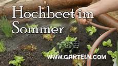 hochbeet bepflanzen f 252 r den sommer