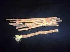 the history of toothbrushes bridgewater va the