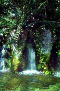 tropical waterfall by gulf island and images