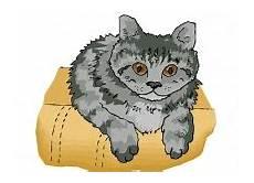 Malvorlagen Katzenkopf Ausmalbilder Katzen Kostenlos