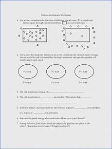 cell membrane and tonicity worksheet mychaume com