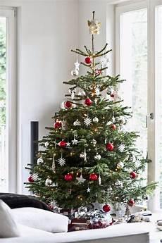 Scandinavian Tree