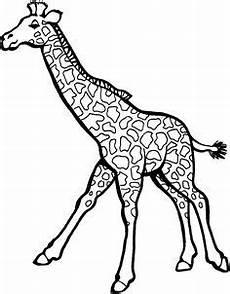Malvorlagen Giraffe Pdf Giraffe Zum Ausdrucken 1046 Malvorlage Giraffe